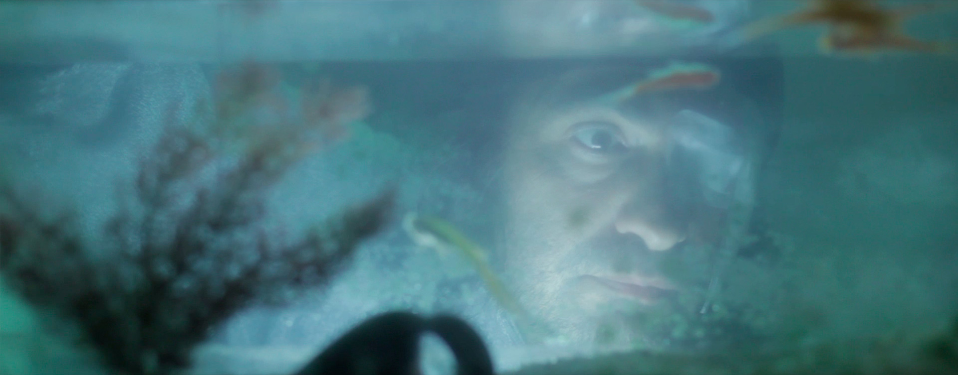 hombre observando acuario en un frame de la película estereoscopía